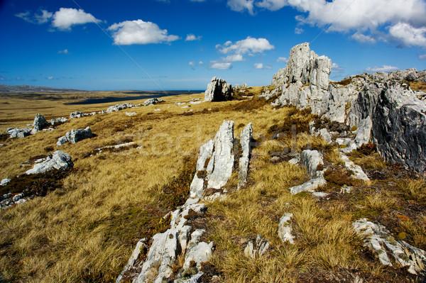 Hegy felső Falkland-szigetek felhők természet tájkép Stock fotó © kwest