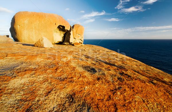 Rotsen kangoeroe eiland zee reizen horizon Stockfoto © kwest