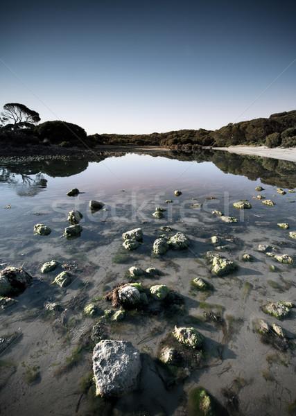 Békés folyam kövek napfelkelte fa Stock fotó © kwest