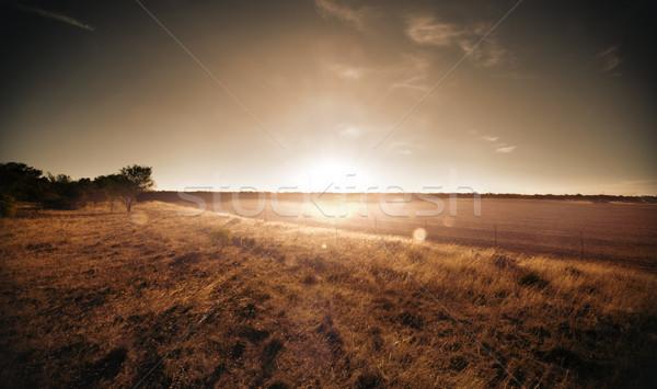 Ländlichen Sonnenuntergang Sonne Ackerland Wolken Stock foto © kwest