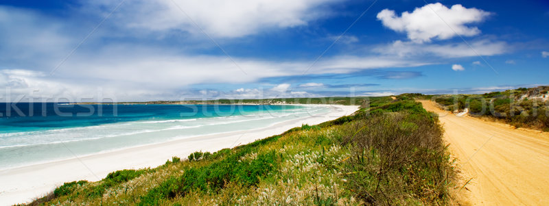 кенгуру острове красивой юг австралийский пляж Сток-фото © kwest