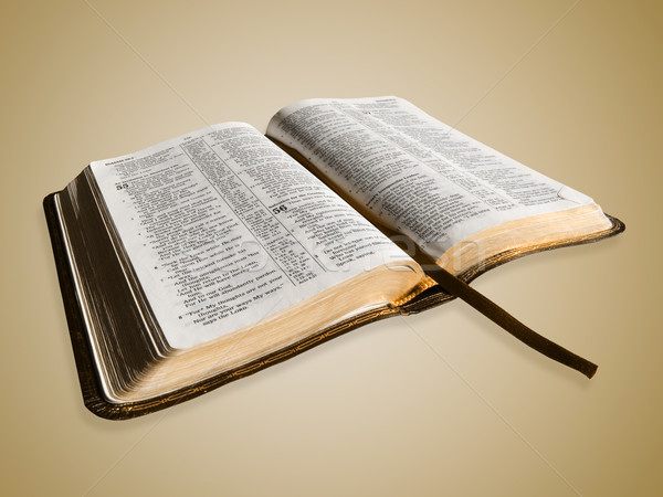 Open Bible Stock photo © kwest