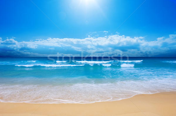 Paradise Beach Stock photo © kwest