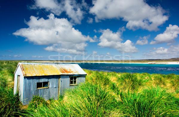 Tin landschap nier eiland falkland eilanden strand Stockfoto © kwest