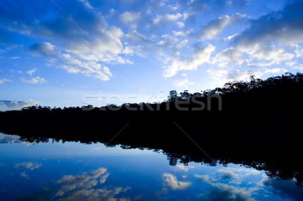 Lenyűgöző tó sziluett gyönyörű naplemente fa Stock fotó © kwest
