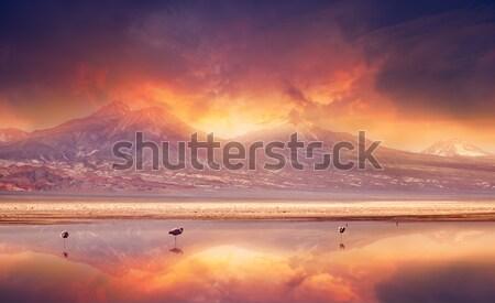 Volcánico puesta de sol montanas desierto Chile Foto stock © kwest