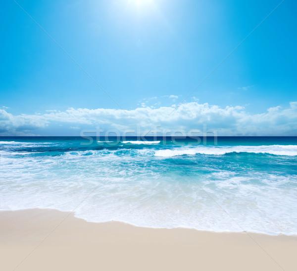 Darab édenkert káprázatos ausztrál tengerpart déli Stock fotó © kwest