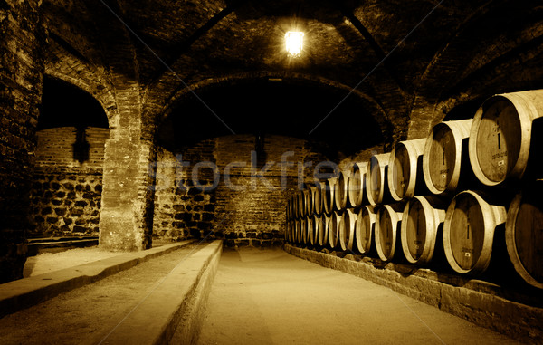 Wine Cellar Stock photo © kwest
