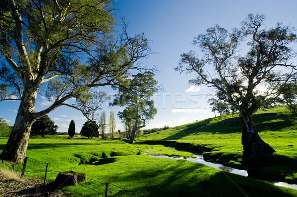 стране ручей красивой сельской сцене весны трава Сток-фото © kwest