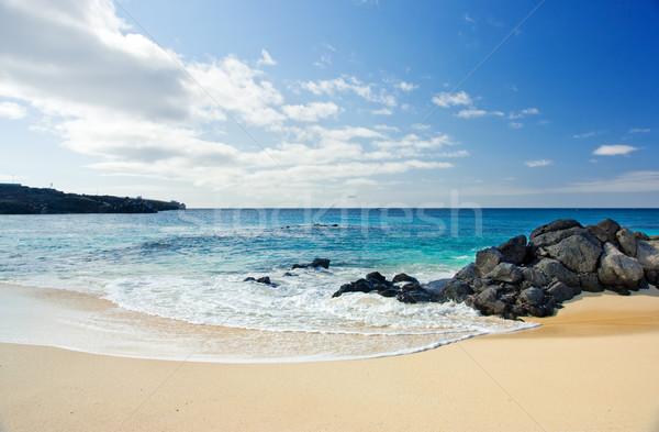 Beach Time Stock photo © kwest