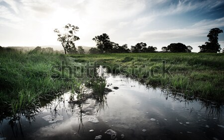 SONY DSC Stock fotó © kwest