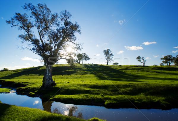 стране ручей сельский Аделаида холмы пейзаж Сток-фото © kwest