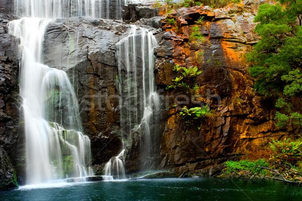 Waterval schoonheid bos achtergrond bomen reizen Stockfoto © kwest