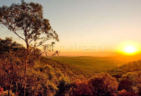 Avustralya gün batımı çalı güney avustralya manzara güzellik Stok fotoğraf © kwest