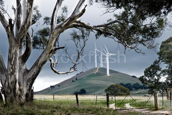 Ausztrál szélfarm vidéki Ausztrália energia elektromosság Stock fotó © kwest
