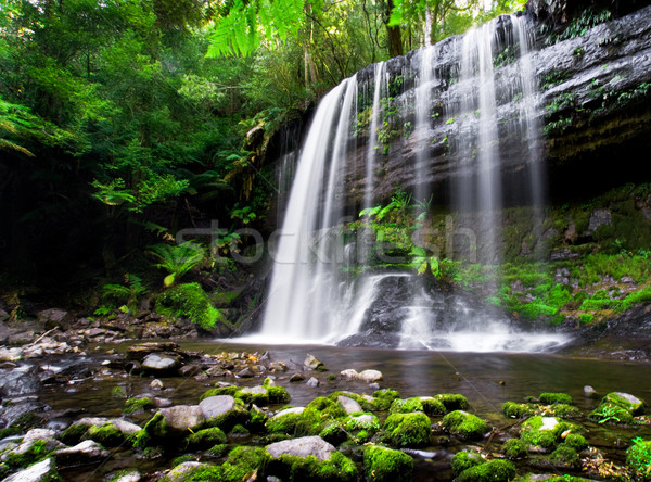 Waterfall Paradise Stock photo © kwest
