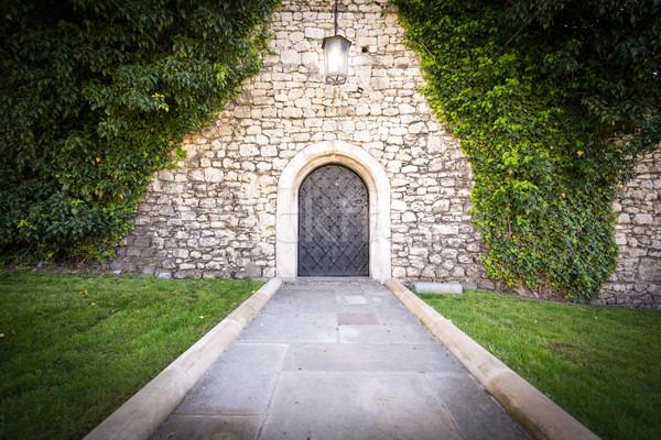 Mały drzwi mur starych zamek kamień Zdjęcia stock © kyolshin