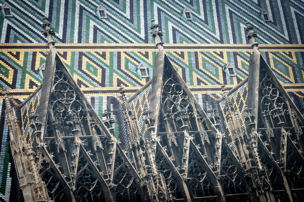 крыши старые Вена Австрия мнение собора Сток-фото © kyolshin