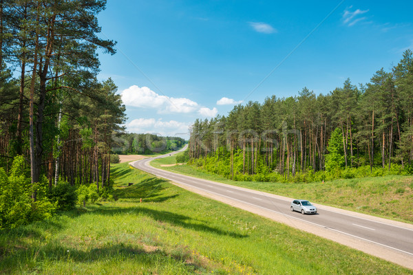 Car on road in forest. Belarus. Stock photo © kyolshin