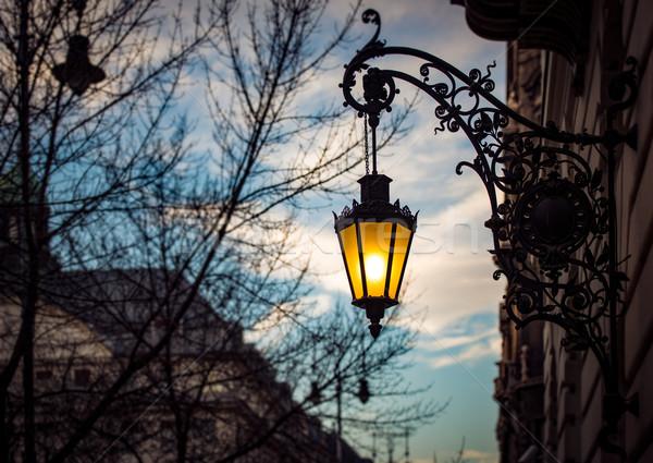 Street light at sunset in Budapest, Europe. Stock photo © kyolshin