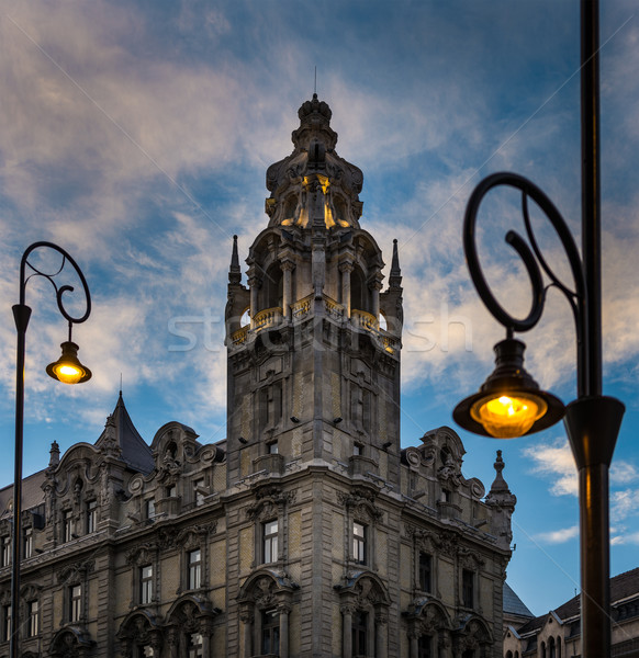 Street light and building at sunset in Budapest. Stock photo © kyolshin