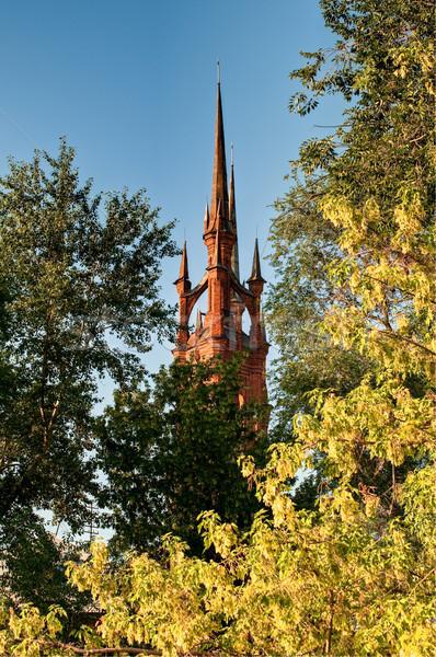 Católico igreja conto de fadas castelo como árvores Foto stock © kyolshin