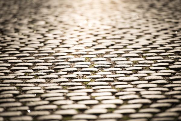 Macskakő út Stockholm Svédország közelkép kilátás Stock fotó © kyolshin