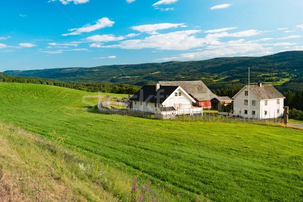 Norvégia vidék házak mezők hegyek kék Stock fotó © kyolshin