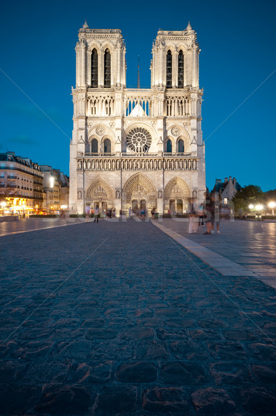 Notre Dame de Paris at night. Stock photo © kyolshin