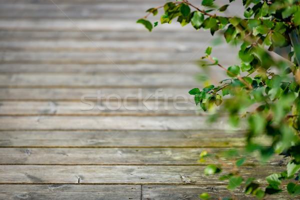Eski ahşap iskele Norveç Avrupa Stok fotoğraf © kyolshin