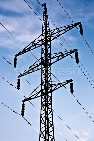 electric transmission line Stock photo © kyolshin