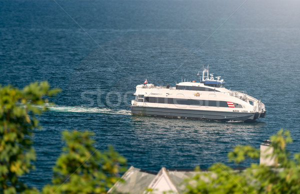 Ship in waters of fiord, Norway, Europe Stock photo © kyolshin