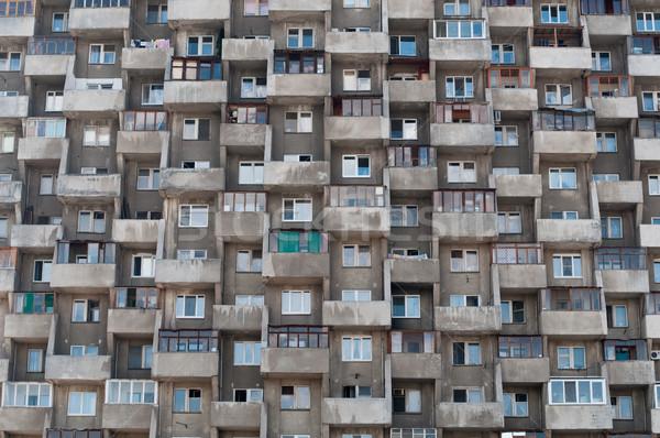 hive like house Stock photo © kyolshin