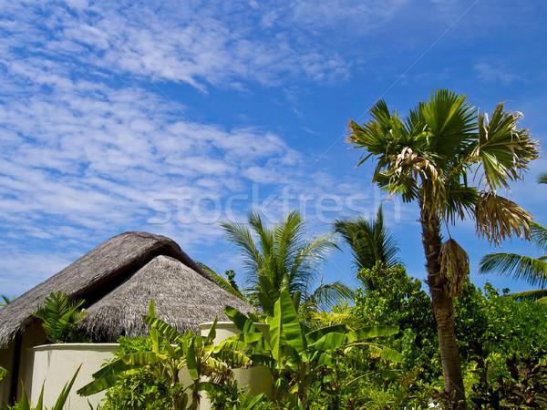 Bungalov fotoğraf tropical island doğa manzara yaz Stok fotoğraf © kyolshin