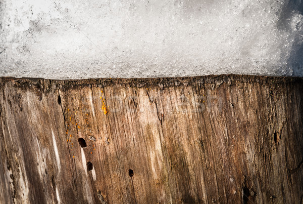 Nature background of stump with snow on it. Stock photo © kyolshin