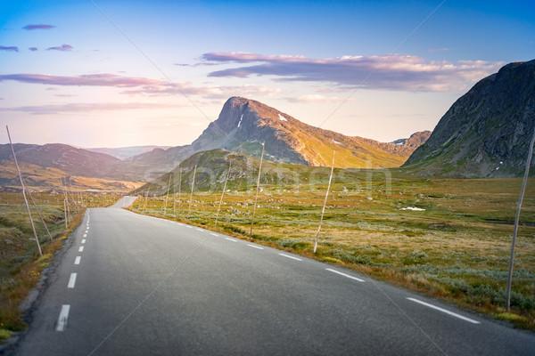 空っぽ 道路 ノルウェー ヨーロッパ 日没 旅行 ストックフォト © kyolshin