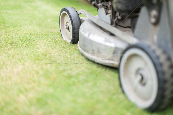 Cutting green grass in yard with lawnmower. Stock photo © kyolshin