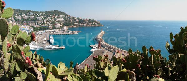 Panorama of Nice city port, France. Stock photo © kyolshin