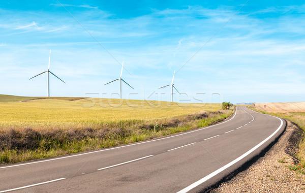 Wind turbines on summer field, green energy. Stock photo © kyolshin