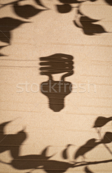 Tl gloeilamp boom bladeren schaduw karton Stockfoto © kyolshin