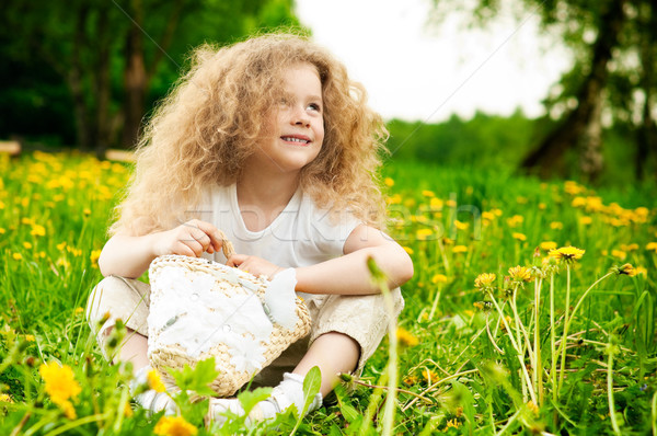 Petite fille champ de fleurs belle faible fille souriant Photo stock © kyolshin