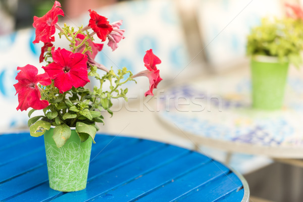 Flower pot on table in cafe Stock photo © kyolshin