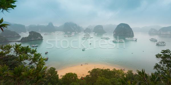 ストックフォト: 風光明媚な · 先頭 · 表示 · ベトナム · パノラマ · 緑の葉