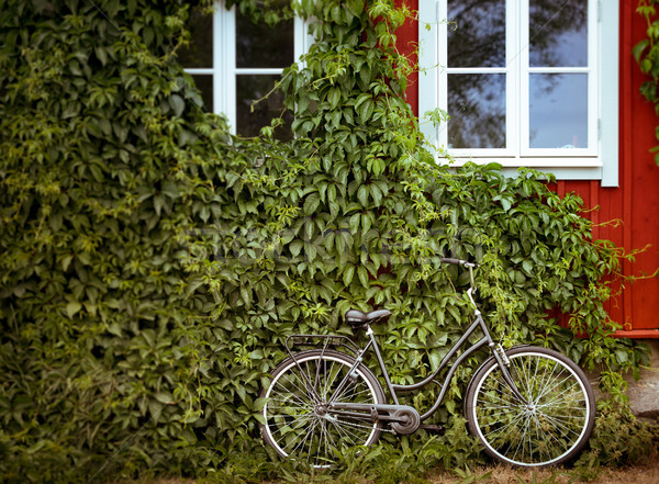 Bisiklet sera yeşil yeşillik duvar kırmızı Stok fotoğraf © kyolshin