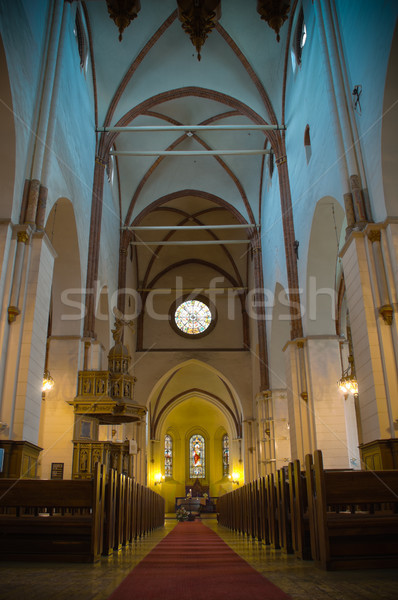 Riga katedral güzel iç Letonya Avrupa Stok fotoğraf © kyolshin