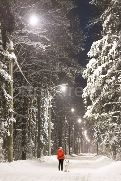 Stock photo: Girl and dog in winter forest covered with snow