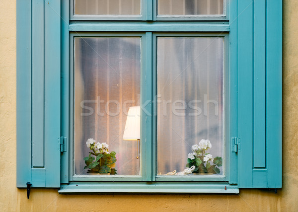 Window with lamp and flower Stock photo © kyolshin