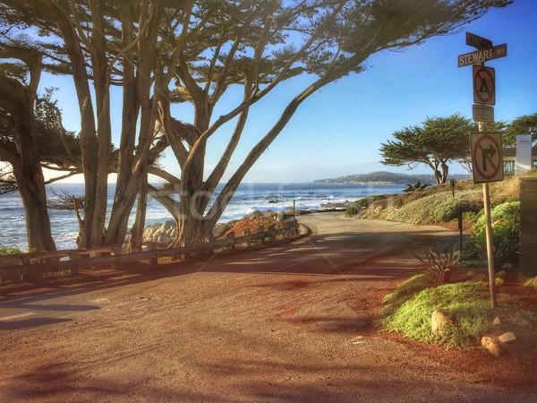 Pacific Coast road in California, USA Stock photo © kyolshin
