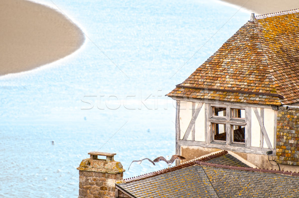Old house on small river bank in France. Stock photo © kyolshin