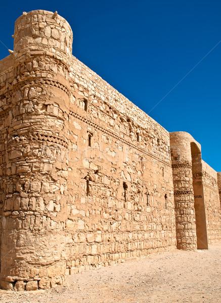 desert castle Stock photo © kyolshin